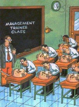 training boss
